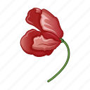 poppy, bloom, red, flower, blossom, wild, cartoon icon