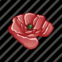 cartoon, drawing, flower, poppy, red, single icon