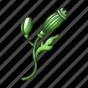 beautiful, beauty, bloom, cartoon, green, poppy, small icon