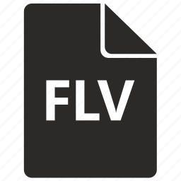 file, flash, flv, format icon