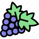 country, europe, grapes, nation, portugal icon