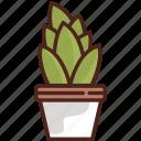 cactus, flower, plant, garden, gardening, nature, tree