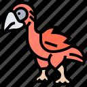 animal, bird, dodo, extinction, prehistoric