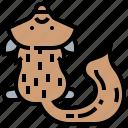 animal, carpet, fur, pelt, skin