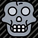 anatomy, monkey, paleontology, primate, skull
