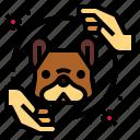 animal, corona, covid, dog, protection, virus