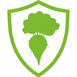 agricultural, beet, flat, plants, protection, vegetable icon