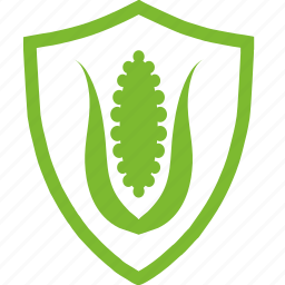 agricultural, corn, flat, plants, protection icon