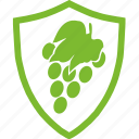agricultural, flat, fruit, grapes, plants, protection icon