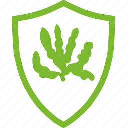 agricultural, flat, plants, protection, rape icon