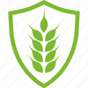 agricultural, flat, plants, protection, rye icon