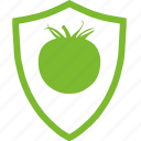 agricultural, flat, plants, protection, tomato, vegetable icon