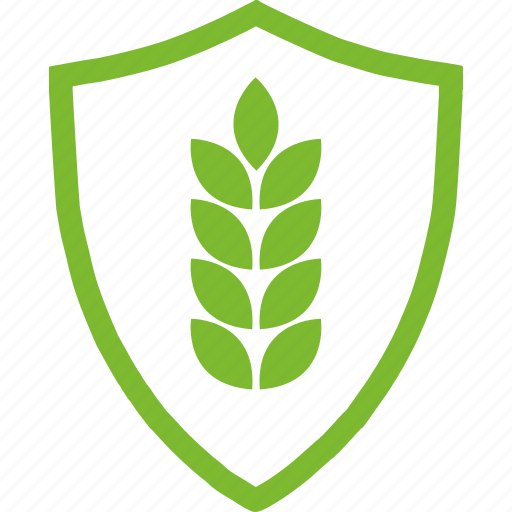 agricultural, flat, plants, protection, wheat icon