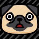 emotion, pug, face, stunning, feeling, expression, emoji