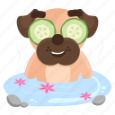 sticker, wellness, dog, spa, emoji, pug, emoticon