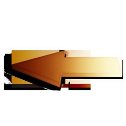 orange, precedent icon
