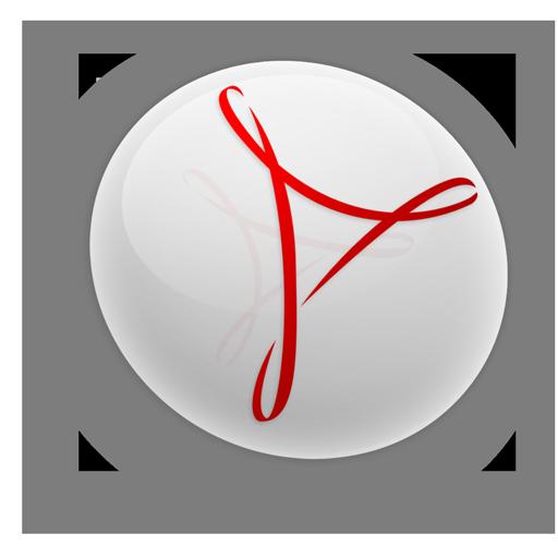 acrobat, cs3, professional icon