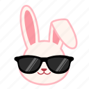 cool, emoji, emotion, expression, face, rabbit icon