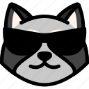 cool, emoji, emotion, expression, face, feeling, raccoon icon