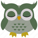 owl, bird, animal, cute, nature
