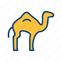 animal, arabian, camel, sacrifice icon