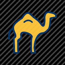 animal, arabian, camel icon