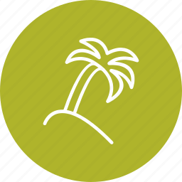 leaf, nature, plam, plant, tree icon