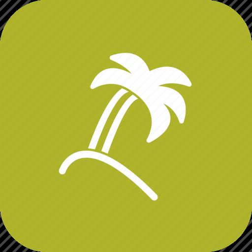 plam, plant, tree icon
