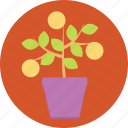 earth, green, growth, internet, life, marketing, plant icon