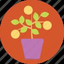 earth, green, growth, internet, life, marketing, plant