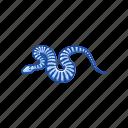 animal, death adder snake, elapid snake, reptile, serpent, snake icon