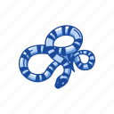 animal, campbell's make snake, pueblan milk snake, reptile, snake, vertebrate