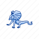 animal, dragon lizard, frill-neck lizard, frilled dragon, invertebrate, lizard, reptile