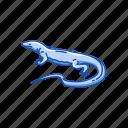 animal, lizard, monitor lizard, reptile, varanus salvator, vertebrate