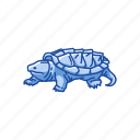 animal, freshwater turtle, reptile, serpentina turtle, shell, vertebrates icon