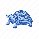 animal, box turtle, reptiles, shell, terrapene, vertebrates icon