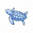 animal, reptiles, sea turtle, turtle, vertebrates icon