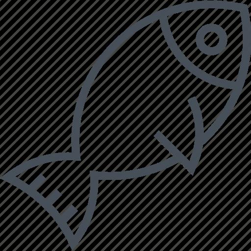 animal, design, fish, food, illustration, sea icon