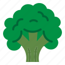 broccoli, food, salad, vegetable icon
