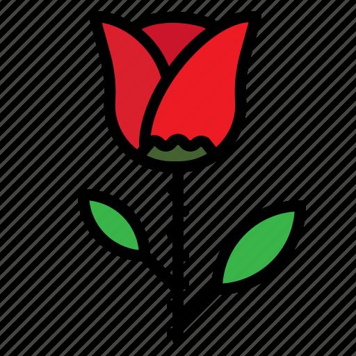 flower, love, romantic, rose icon