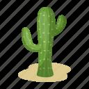 cactus, desert, plant, thorn icon