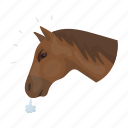 head, horse, pet, rodeo icon