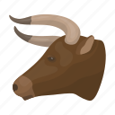 animal, bull, head, horns, rodeo icon