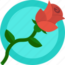 flower, gift, love, romance, rose, valentines icon