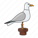 bird, fly, gull, sea icon