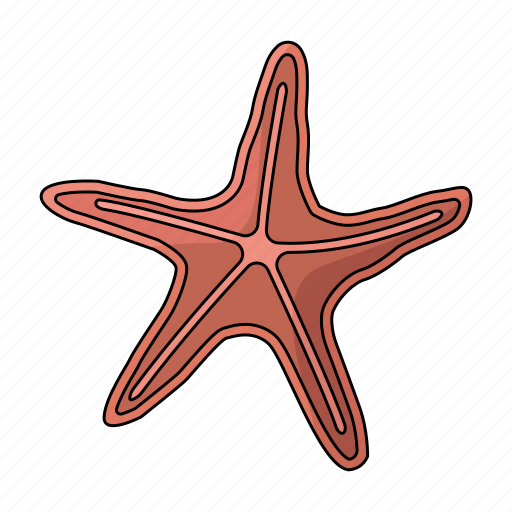 Creature, sea, sea star, star icon - Download on Iconfinder