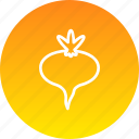 beet, easter, food, plant, root, spring, vegetable icon