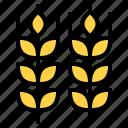 festival, ireland, saint patrick, wheat icon