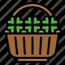 clover, festival, flower pot, plant, shamrock