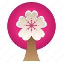 blossom, cherry, festival, flower, sakura, sakura tree, tree icon